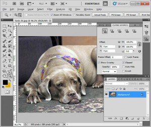 photoshop_screen-cs5